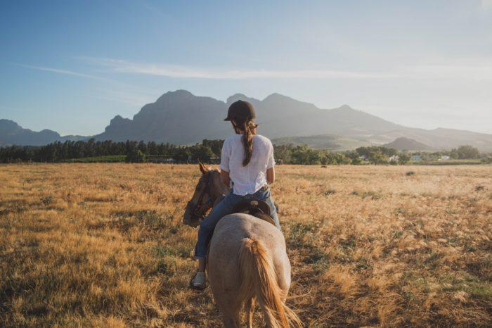 Horseback Riding: Parco Valle del Lambro