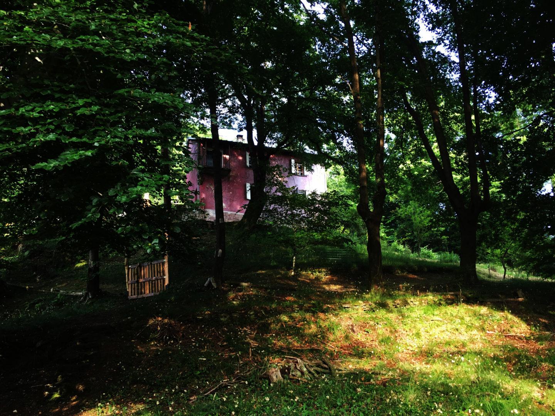 La Casetta Rossa nel Bosco