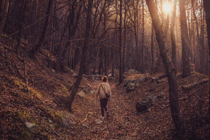 Ciclo di Eventi: L'Autunno in Valvarrone / Autumn in Valvarrone